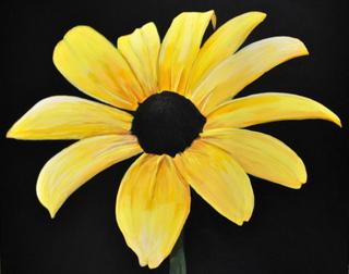 sold out bushmill tavern black eye susan maryland state flower